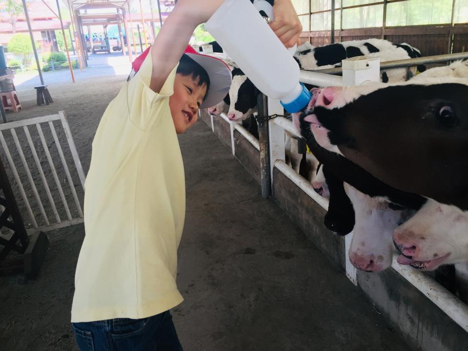 [1-2 현장체험]우유 주기 (8).JPG